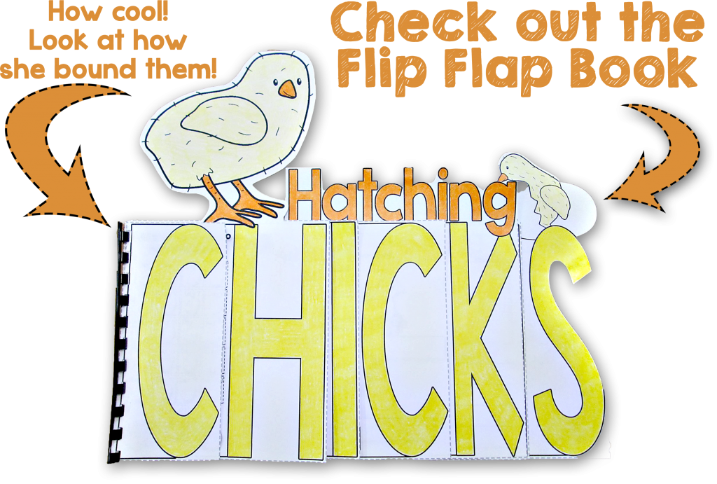 Hatching Chicks Flip Flap Book